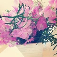 FLOWER 公式ブログ/お花(*^^*)千春 画像1