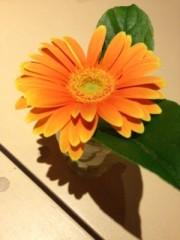FLOWER 公式ブログ/らんち、伶菜 画像1