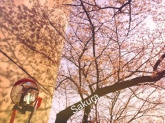 FLOWER 公式ブログ/G'morning!   千春 画像1