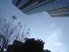 FLOWER 公式ブログ/いい天気!はるみ 画像1