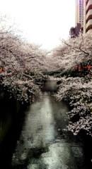 FLOWER 公式ブログ/そういえば!  杏香 画像1
