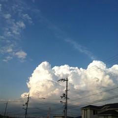FLOWER 公式ブログ/大阪の。美央 画像1