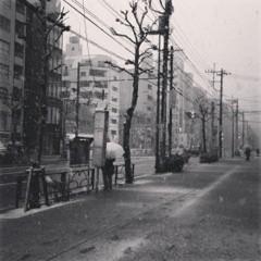 FLOWER 公式ブログ/雪。  千春 画像1