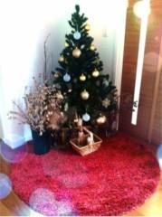 FLOWER 公式ブログ/クリスマスツリー。美央 画像1