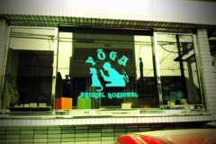 宇都宮快斗 公式ブログ/不思議東京 画像1
