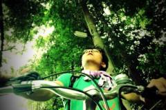 宇都宮快斗 公式ブログ/木のトンネル。 画像1
