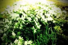 宇都宮快斗 公式ブログ/何だか 画像1