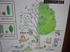 宇都宮快斗 公式ブログ/散歩2 画像2