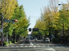 宇都宮快斗 公式ブログ/暖かい日の光浴びて 画像1