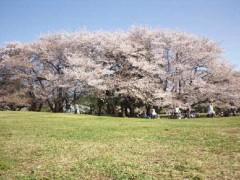 宇都宮快斗 公式ブログ/感謝の言葉。 画像1