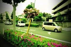 宇都宮快斗 公式ブログ/散歩4 画像3
