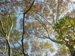 宇都宮快斗 公式ブログ/天気、元気! 画像1