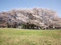 宇都宮快斗 公式ブログ/くる〜〜〜〜〜! 画像1