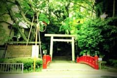 宇都宮快斗 公式ブログ/涼しげな場所。 画像1