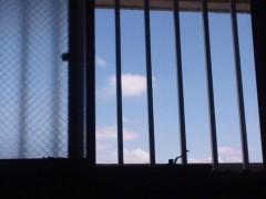 宇都宮快斗 公式ブログ/心地よい風。 画像1