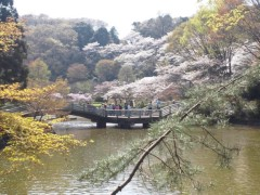 宇都宮快斗 公式ブログ/小春日和! 画像2