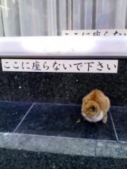 宇都宮快斗 公式ブログ/だんけ しぇ〜ん! 画像1