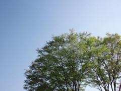 宇都宮快斗 公式ブログ/新緑の季節 画像1