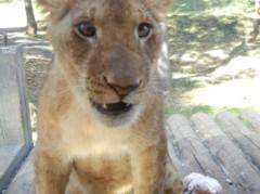 下島美来 公式ブログ/多摩動物公園♫ 画像2