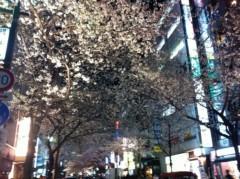 下島美来 公式ブログ/春です☆ 画像2