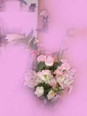 月野魅邑 プライベート画像/こっちわぁ・・・写真集かな? DSCF0977