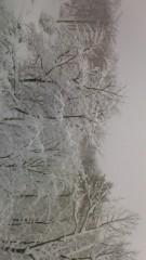 見栄晴 公式ブログ/大雪 画像1