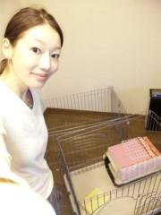 小山田みずき 公式ブログ/わんにゃんハウス改築開始〜 画像1