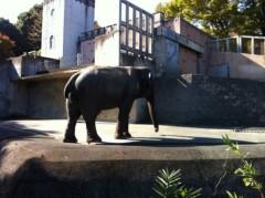 純烈 公式ブログ/マイ動物園 画像1