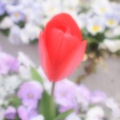 石田晃久 公式ブログ/東京ドーム 画像1