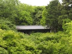 石田晃久 公式ブログ/東福寺にいきました 画像3