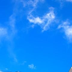 石田晃久 公式ブログ/プチ幸せ2 画像3