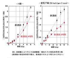 石田晃久 公式ブログ/ビール党に朗報 画像1
