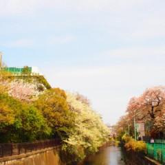 石田晃久 公式ブログ/春が来た5 画像2