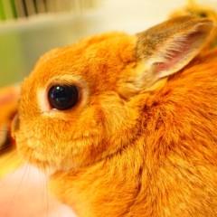 石田晃久 公式ブログ/おはようございます。 画像2