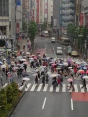 石田晃久 公式ブログ/傘の花 画像1