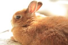 石田晃久 公式ブログ/ひなたぼっこ 画像3