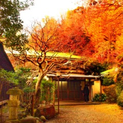 石田晃久 公式ブログ/横浜日野高校同窓会のお知らせ 画像1