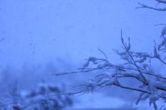 石田晃久 公式ブログ/初雪 画像3