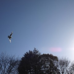 石田晃久 公式ブログ/続く青空 画像3
