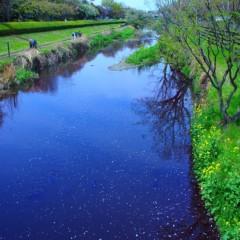 石田晃久 公式ブログ/春が来た6 画像3