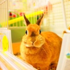 石田晃久 公式ブログ/おはようございます。 画像1