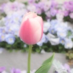 石田晃久 公式ブログ/東京ドーム 画像2