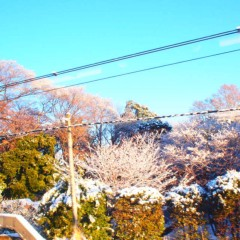 石田晃久 公式ブログ/中央線順調 画像2