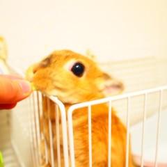 石田晃久 公式ブログ/おはようございます。 画像3