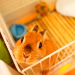 石田晃久 公式ブログ/おはようございます 画像3