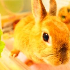 石田晃久 公式ブログ/時間をつくれた朝 画像3