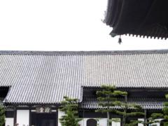 石田晃久 公式ブログ/東福寺にいきました 画像2