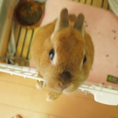 石田晃久 公式ブログ/そろそろおでかけ 画像2