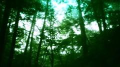 石田晃久 公式ブログ/霧の旧軽井沢 画像3