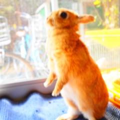 石田晃久 公式ブログ/いい天気 画像3